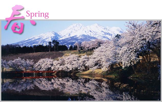 nakago_spring