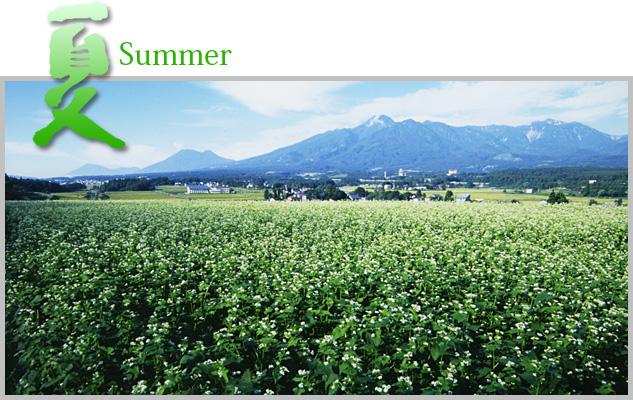 nakago_summer