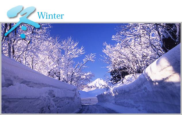 nakago_winter
